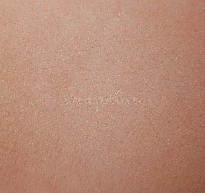 Mänskligt med hud med prickceller royaltyfri foto