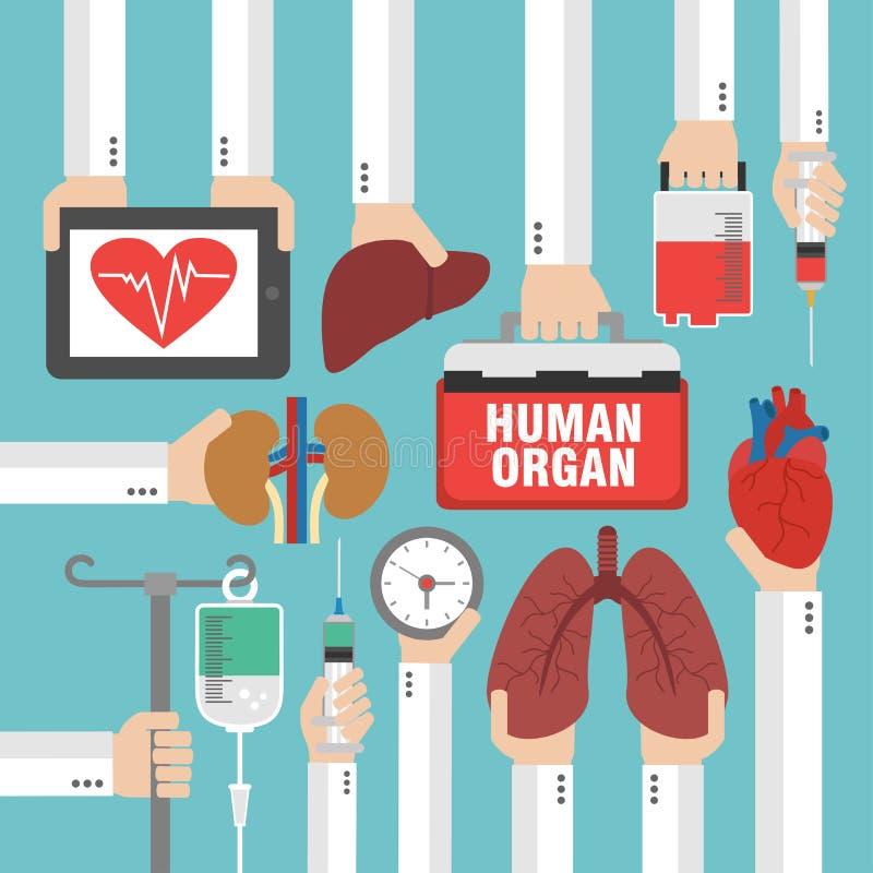 Mänskligt organ för transplantationdesignlägenhet royaltyfri illustrationer
