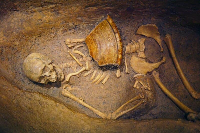 Mänskligt skelett- återstår arkivfoto