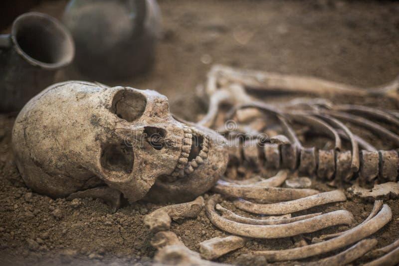 mänskligt skelett- ligga på jordningen royaltyfri foto
