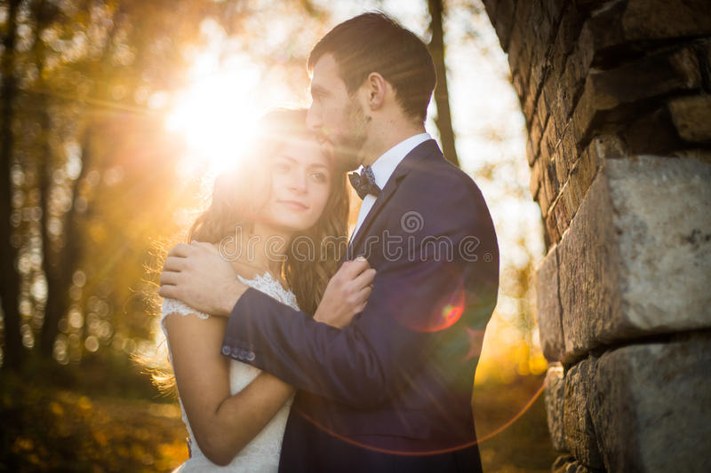 Märchen romantische valentyne Jungvermähltenpaare stockfotografie