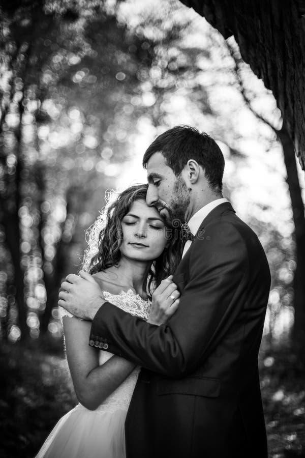 Märchen romantisches valentyne Jungvermählten-Paarumarmen stockfotos
