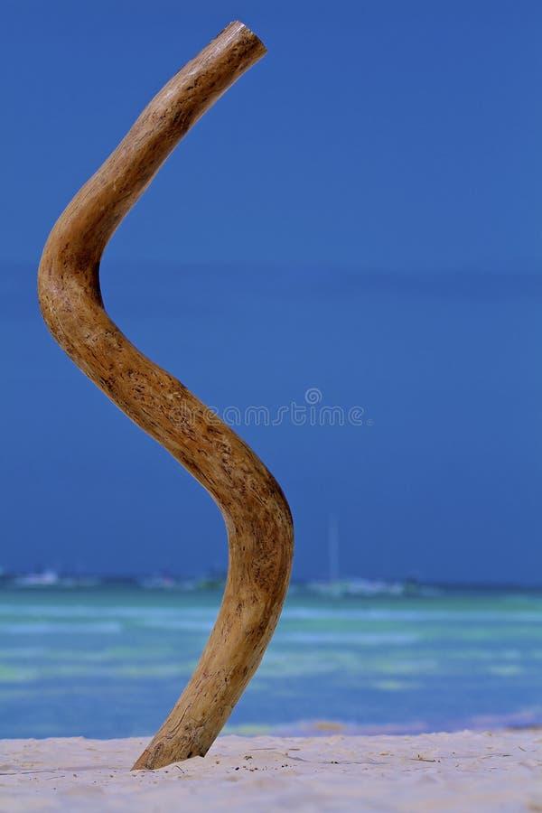 Märka från en tree arkivfoto