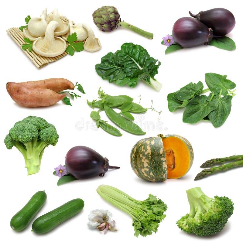 märkdukgrönsak royaltyfria bilder