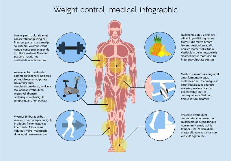 Mäta kroppmass, infographic läkarundersökning vektor illustrationer