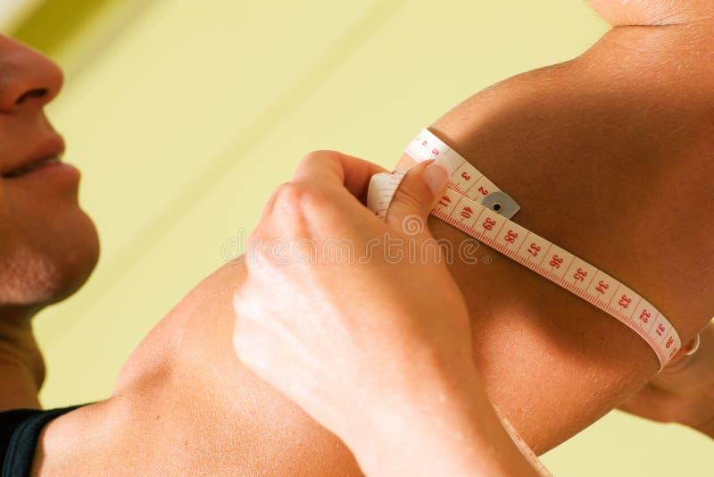 mätande muskler royaltyfri fotografi
