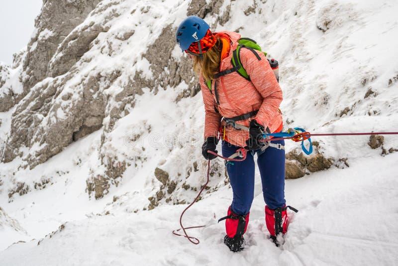 Młoda dziewczyna abseiling stromą skałę w wąskiego couloir zakrywającego w świeżym śniegu, używać tubki belay talerza, wspierał z obrazy stock