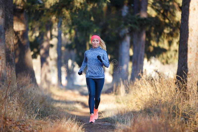 Młoda kobieta jogging na śladzie w jesień parku zdjęcie royalty free