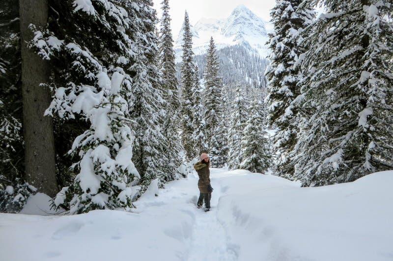 Młoda kobieta snowshoeing przez lasów Wyspa jezioro w Fernie, kolumbia brytyjska, Kanada fotografia royalty free