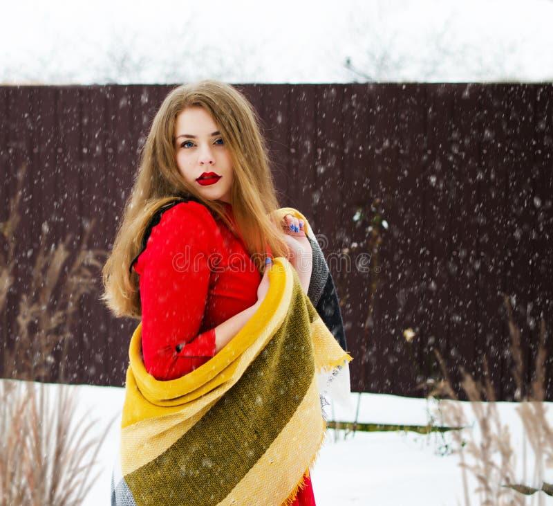 Młoda uśmiechnięta dziewczyna w zimie zdjęcia royalty free