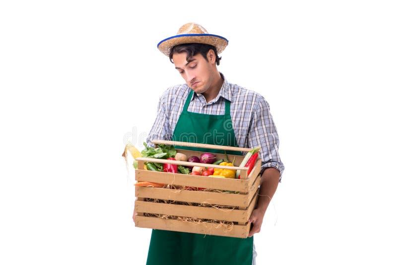 Młody rolnik z świeżym produkt spożywczy odizolowywającym na białym tle obrazy stock