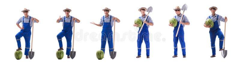 Młody rolnik z arbuzem odizolowywającym na bielu zdjęcie stock
