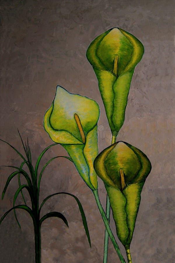 Måla av Callaliljan stock illustrationer