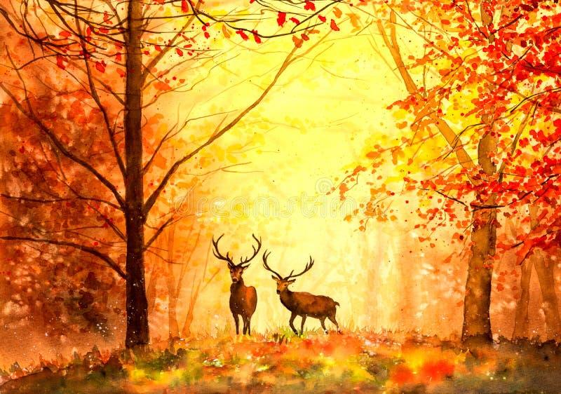 Måla för vattenfärg - hjortar i skogar stock illustrationer