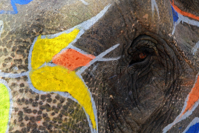målad elefant fotografering för bildbyråer