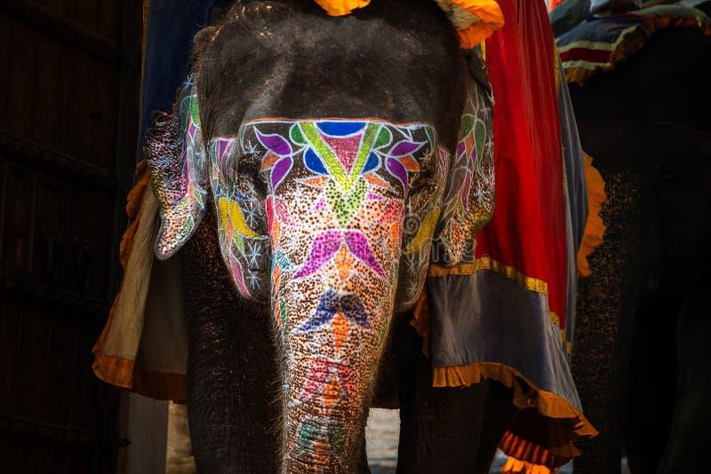 Målad elefant i Jaipur, Indien arkivfoton