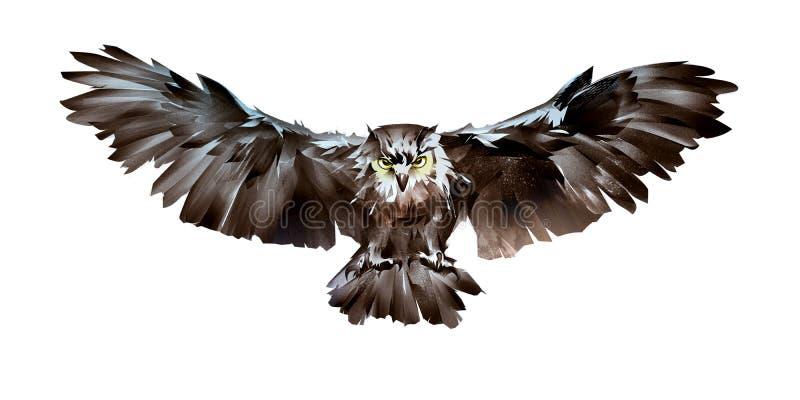 Målad framdel för uggla för flygfågel på vit royaltyfri illustrationer