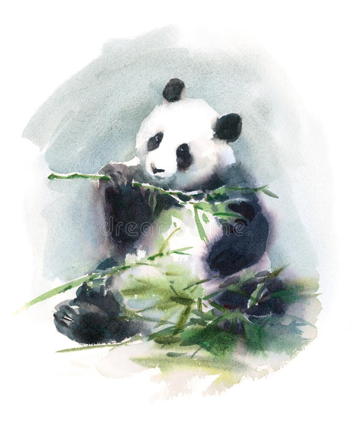 Målad Panda Eating Bamboo Watercolor Animal illustrationhand royaltyfri illustrationer