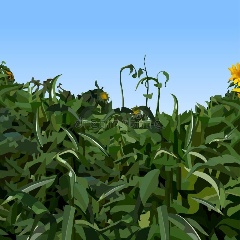Målad tät vegetation av gröna växter mot en blå himmel royaltyfri illustrationer