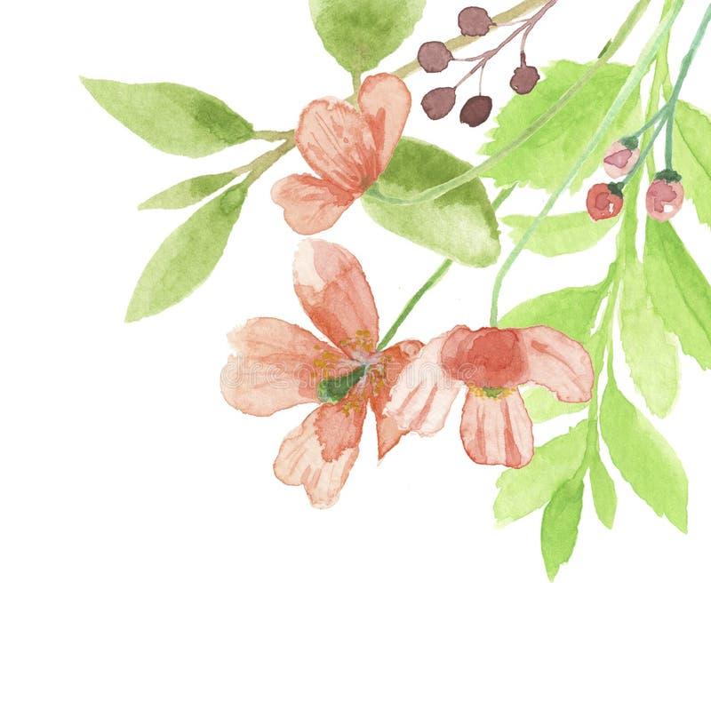 Målad vattenfärgPoppy Corner Frame Summer Flower blom- hand royaltyfri illustrationer