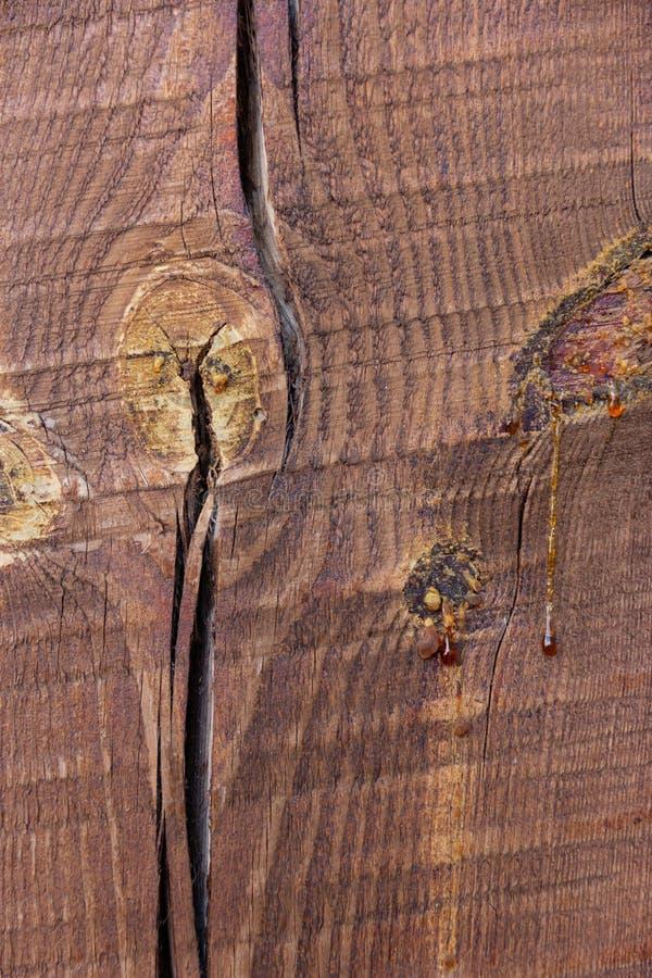 Målade trä sörjer strålen med en spricka Glass med bevattnar arkivfoton