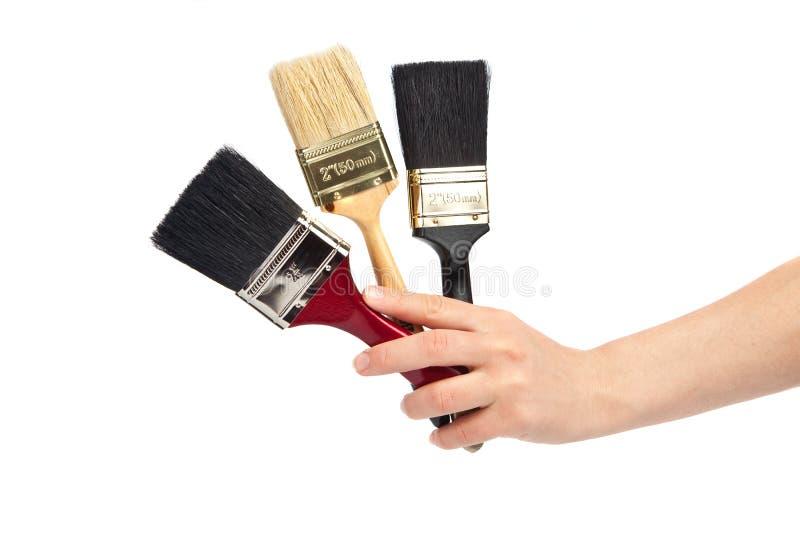 målarfärg tre för borstehandholding royaltyfri bild