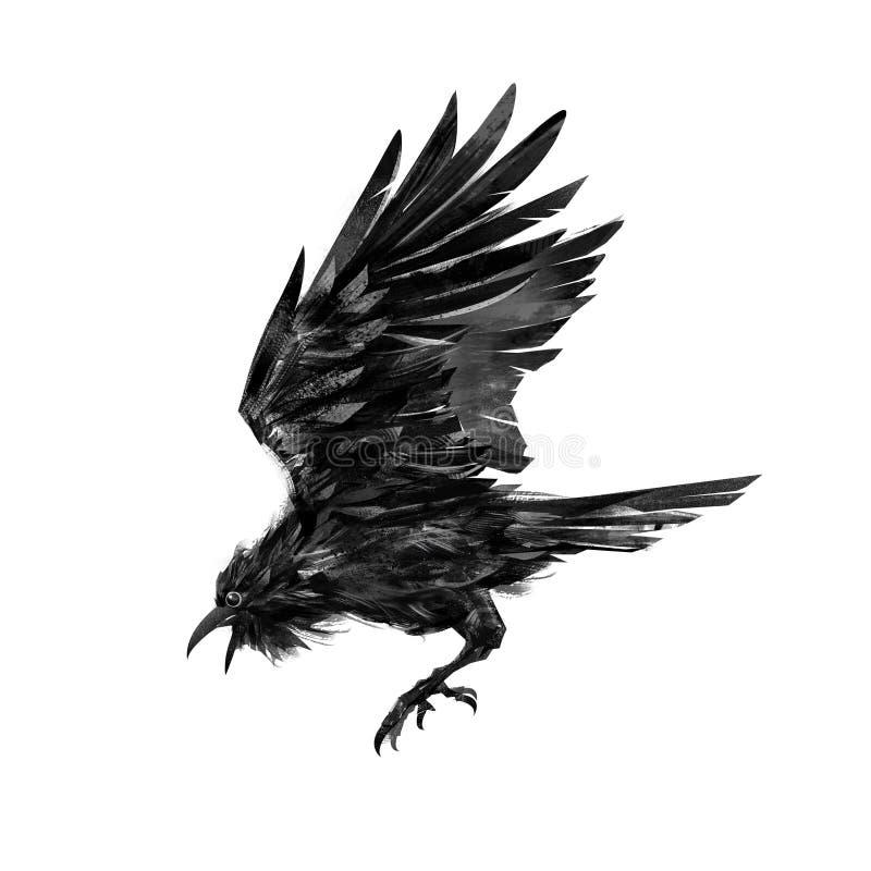 Målat flyga den korpsvarta fågeln på vit bakgrund royaltyfri illustrationer