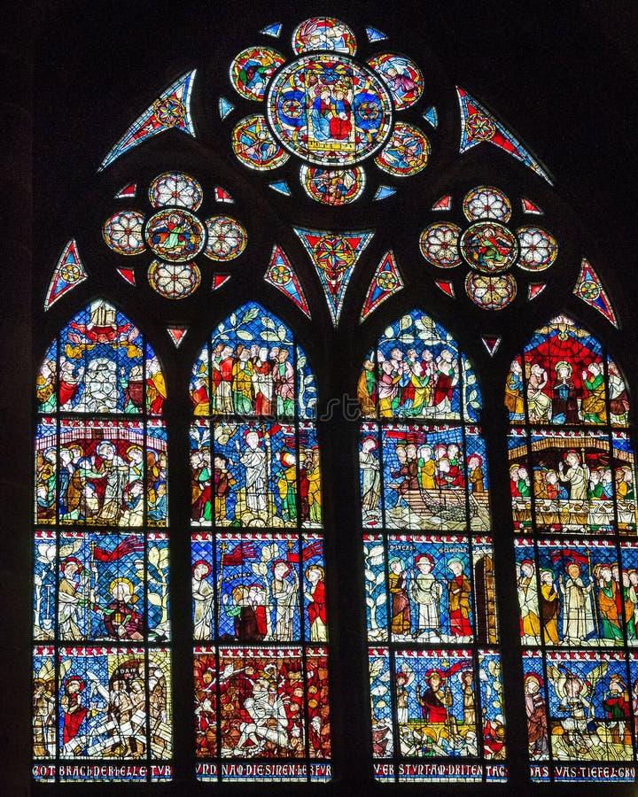 Målat glassfönster i den Strasbourg domkyrkan arkivbild