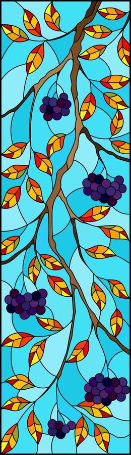 Målat glassillustration med en filial av den svarta chokeberryen, klungor av bär och sidor mot himlen, vertikal bild vektor illustrationer