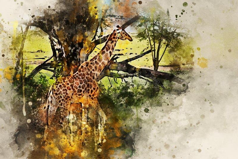 Målning för Digital färgstänkvattenfärg av den ugandiska giraffet royaltyfria bilder
