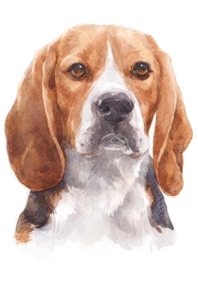Målning för vattenfärg av en stygg hund namngav Beagle 058 stock illustrationer