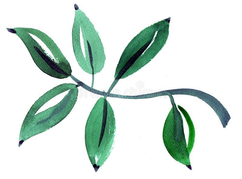 Målning för vattenfärgbladintryck royaltyfri illustrationer