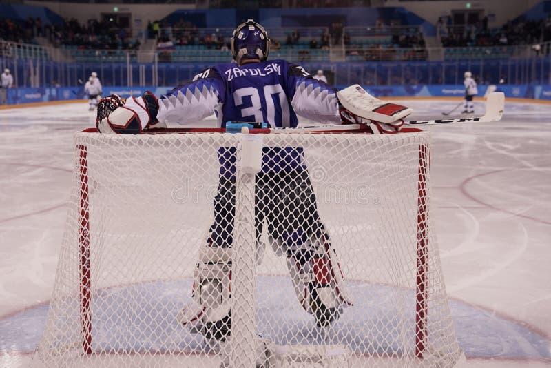 Målvakt Ryan Zapolski av laget USA i handling mot Team Slovenia i lek för runda för förberedande åtgärd för ishockey för man` s p royaltyfri fotografi