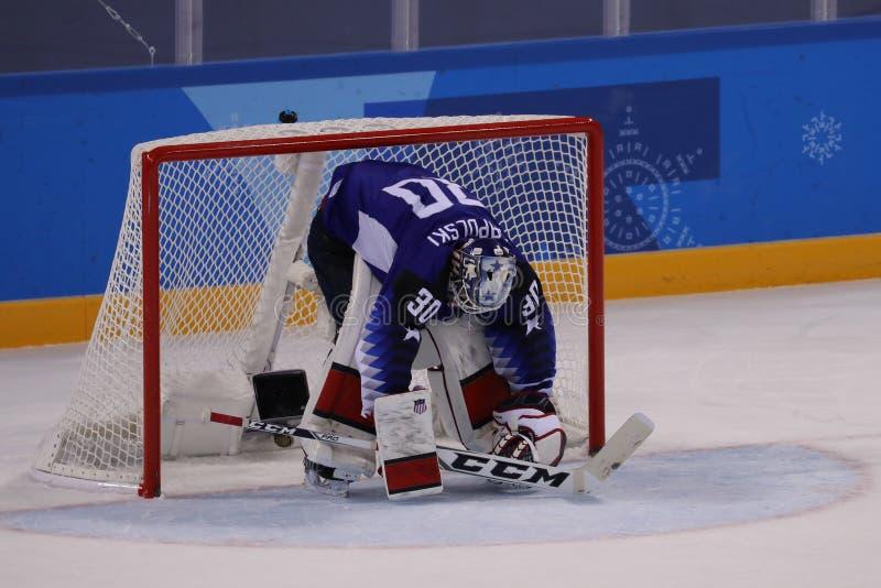 Målvakt Ryan Zapolski av laget USA i handling mot Team Slovenia i lek för runda för förberedande åtgärd för ishockey för man` s p fotografering för bildbyråer