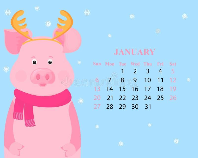 Månatlig kalender för Januari 2019 Gulligt svin med hjorthorn och i en halsduk roligt piggy kinesiskt nytt år vektor illustrationer