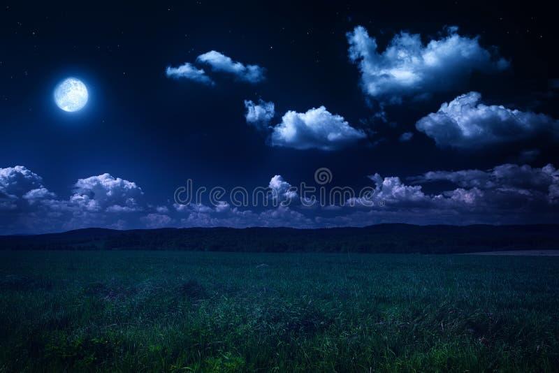 Månbelyst natt på naturen royaltyfri fotografi
