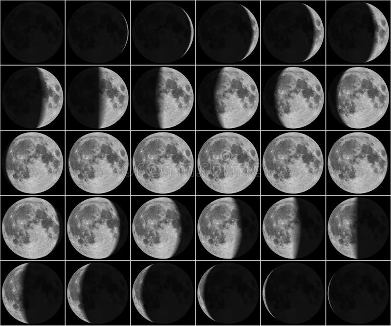Måne 30 dagfaser fotografering för bildbyråer