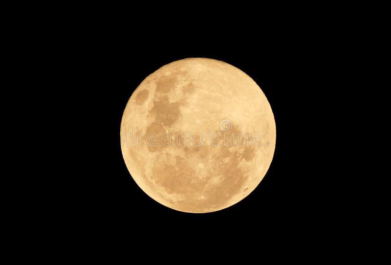 Måne för fullt blod på den mörka natten stock illustrationer