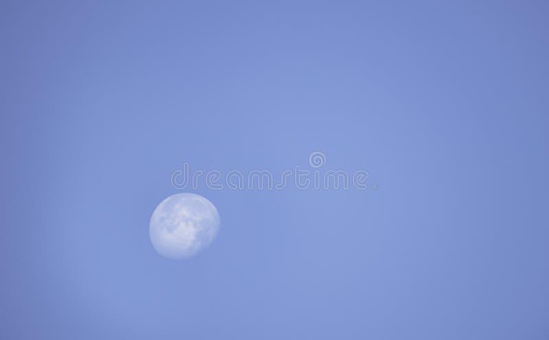 Måne i dagsljus på den ljusa himlen arkivbilder