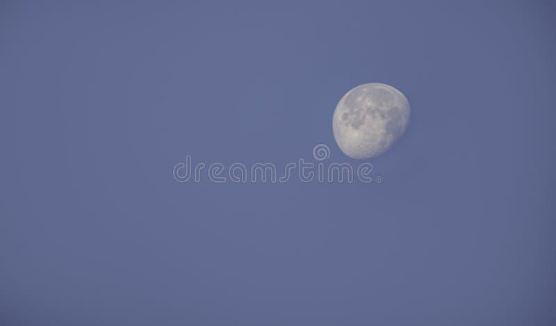 Måne i dagsljus på den ljusa himlen arkivfoto