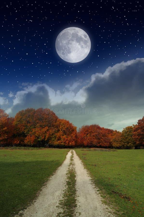 Måne i landet fotografering för bildbyråer