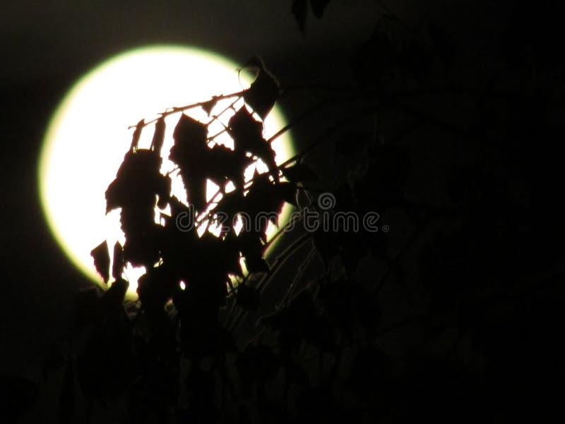 Månen hiden in royaltyfri fotografi