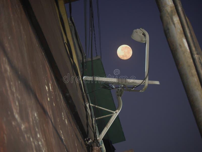 Månen och parabolantennen arkivfoto