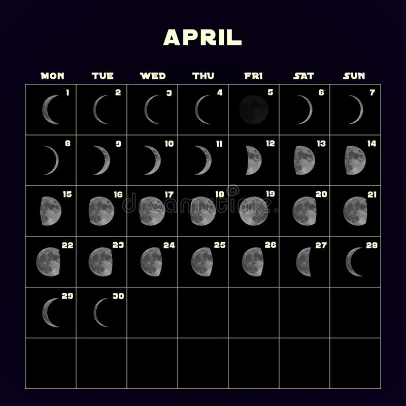 Månen synkroniserar kalendern för 2019 med den realistiska månen _ vektor royaltyfri illustrationer