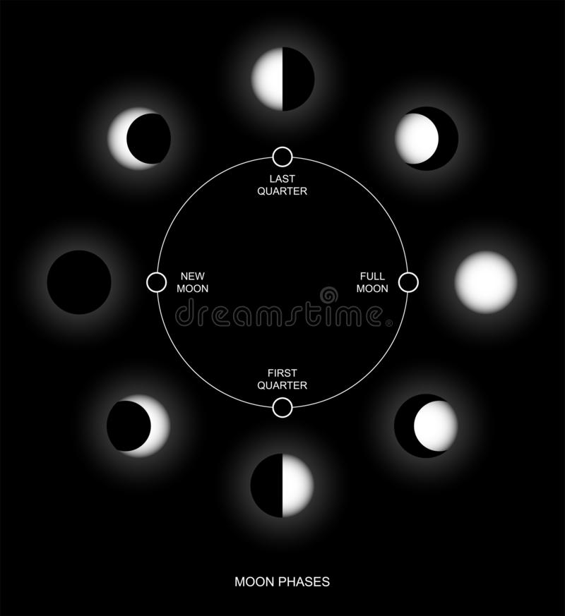 månesvartcirkel 2 vektor illustrationer