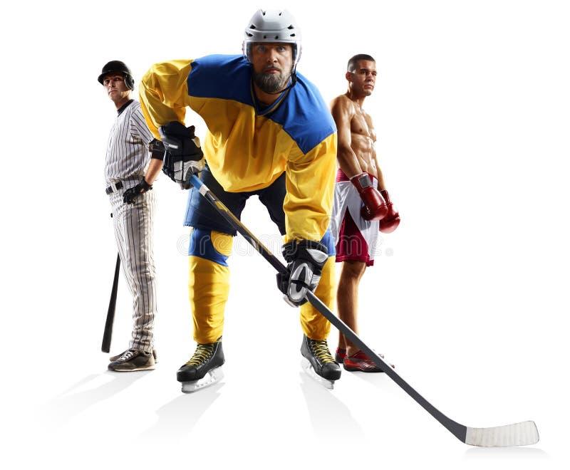 Mång- boxning för baseball för sportcollageishockey som isoleras på vit royaltyfri foto