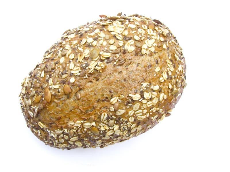 mång- brödkorn royaltyfri foto