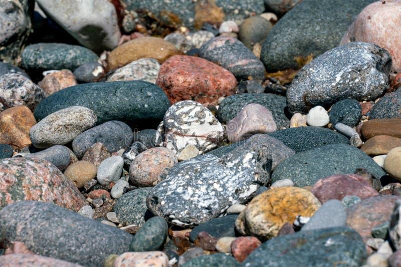 Mång- färgade kiselstenar på en strand arkivfoto