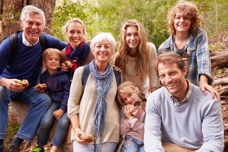Mång--utveckling familj med tonår som utomhus tillsammans äter arkivbild