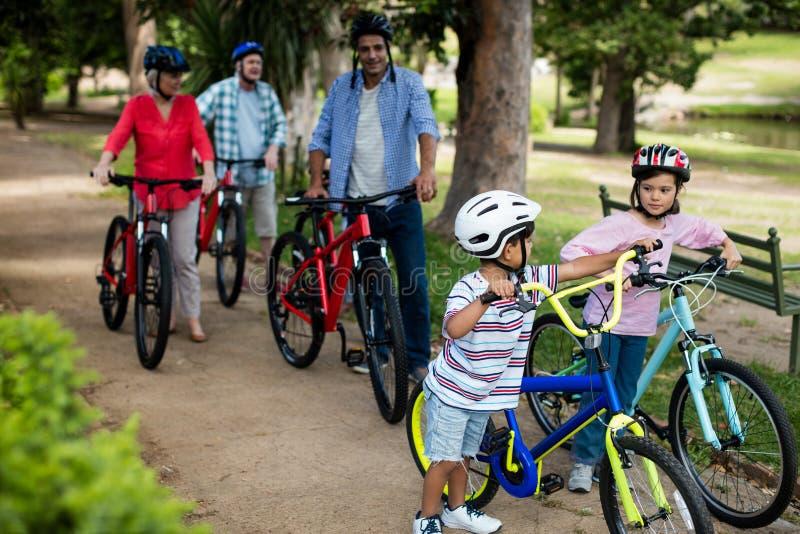Mång--utvecklingen familjen som går med cykeln parkerar in royaltyfria foton